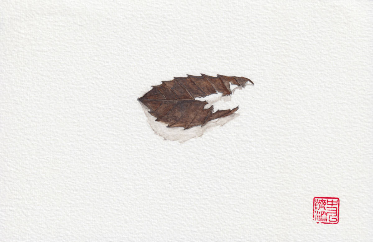 Fire Eaten Charred Leaf. watercolor and pencil illustration