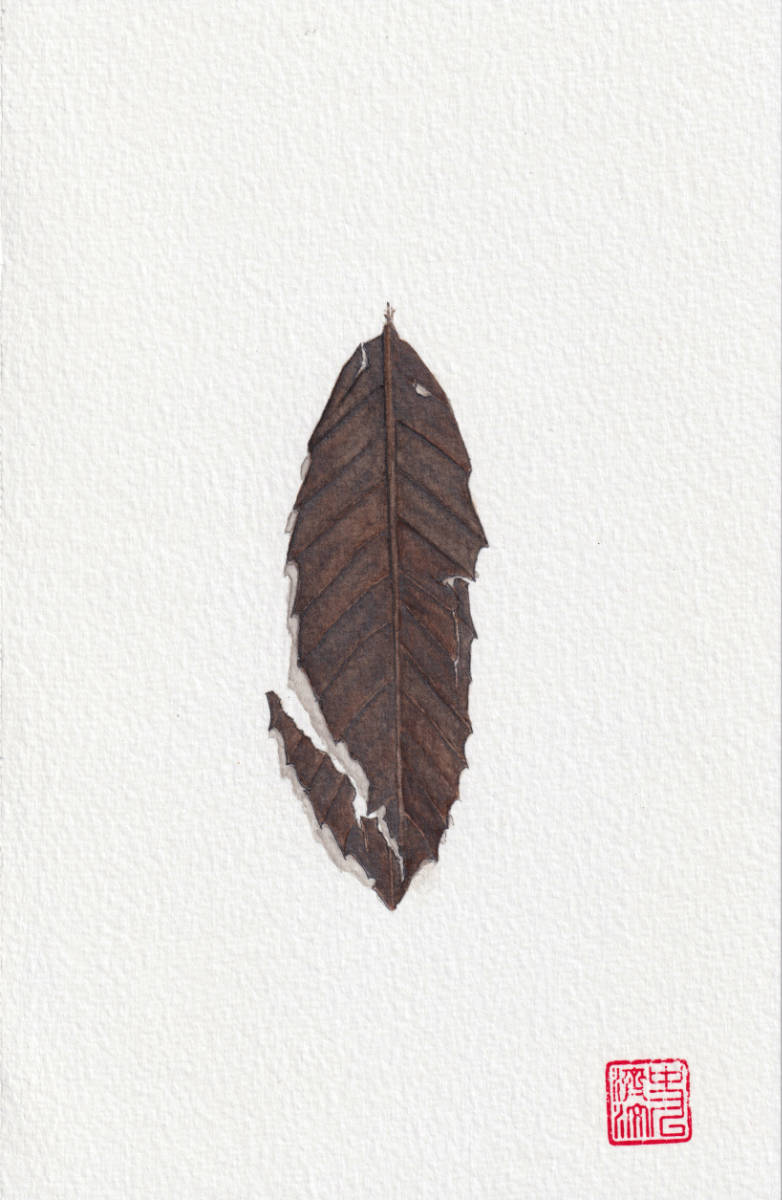 Chared Leaf with Tears. watercolor & pencil illustration on paper